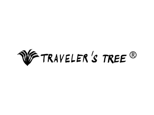 TRAVELER'S TREE